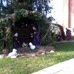 Presepe sagrato chiesa di Camino